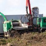 Koksnes šķeldošana, krūmu šķeldošana, zaru šķeldošana, griešanas atkritumu šķeldošana ar nažveida šķeldotāju Jenz vai Biber koksnes sasmalcināšana